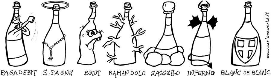 le varie espressioni del vino...